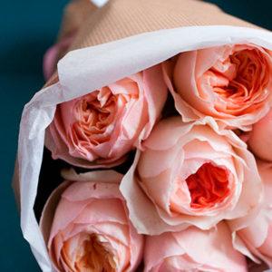 Пионовидные розы Дэвид Остин (сорт Juliet)