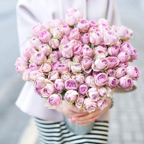 Пионовидная роза Silver Lace (Сильвер Лэйс)